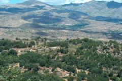 Sierra Umbria